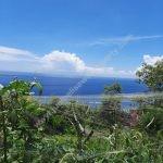 Dijual Tanah di Nusapenida Bali