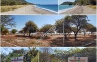 Dijual Tanah Pantai Utara Pulau Flores